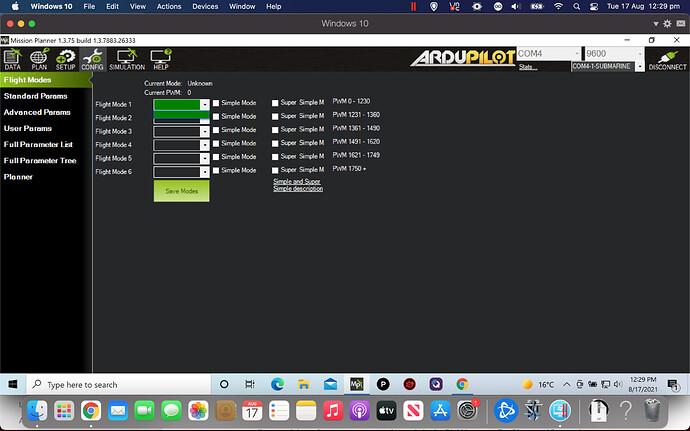 Screen Shot 2021-08-17 at 12.29.30 pm